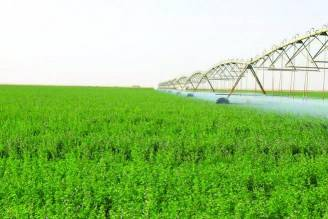 خالد عبد الرحمن الرحايلة للزراعة و الصيد