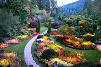 دنيا الحدائق والزراعة