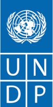 برنامج الأمم المتحدة الإنمائي UNDP