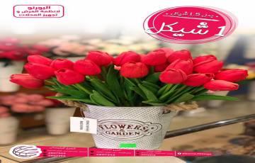 احدث عروض البورنو لأنظمة العرض والتخزين على الورود