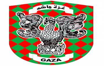 طبيب بيطري - غزة