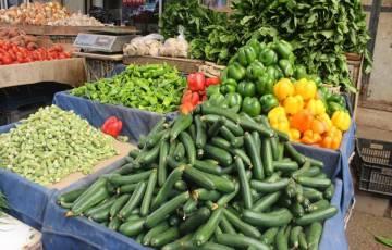 الاقتصاد بغزة تنشر قائمة بأسعار الخضروات في أسواق القطاع