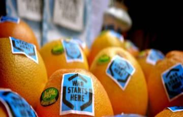 إشادة بقرار منع دخول منتجات المستوطنات إلى تشيلي