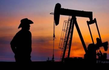 """الرئيس التنفيذي لأدنوك: العالم سيظل يحتاج النفط والغاز """"لعقود كثيرة قادمة"""""""